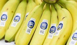 milieuvriendelijke etiketten